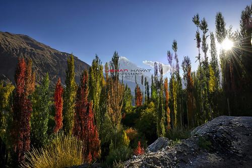 pakistan photography nikon adams nikkor rakaposhi hunza hayat d800 usman ansel 1635 uhayat rememberthatmomentlevel1