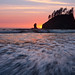 Olympic Endless Summer - Olympic Peninsula, Washington by Adrian Klein