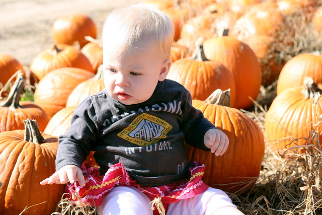 Clara in the pumpkins