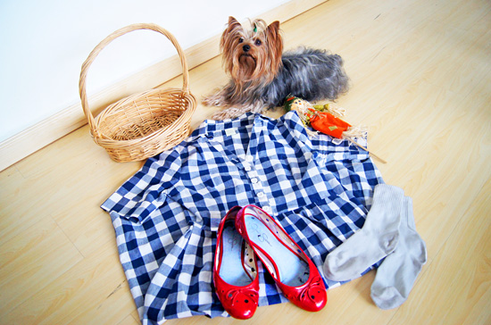 DIY Halloween Costume: Dorothy from Wizard of Oz