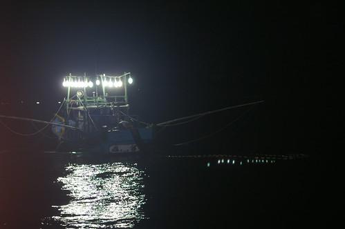 隨著科技進步,燈火漁業集魚的方式更有效率,漁獲效益大幅提高。(圖片來源:水產試驗研究所)