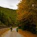 Jim Thorpe Autumn Fun