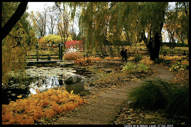 Vos photos d'automne  8114420897_839ab82118_b