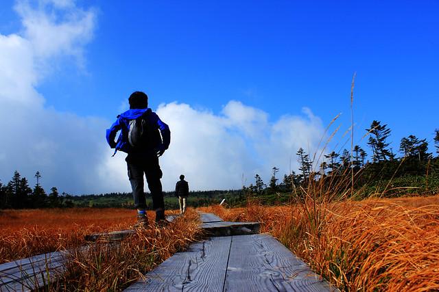 20121014_八幡平_0002