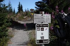 Mount Margaret, Mount Saint Helens National Volcanic Monument