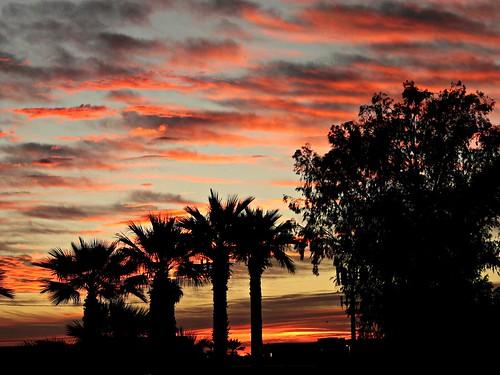 sunrise favoriteplace odc1