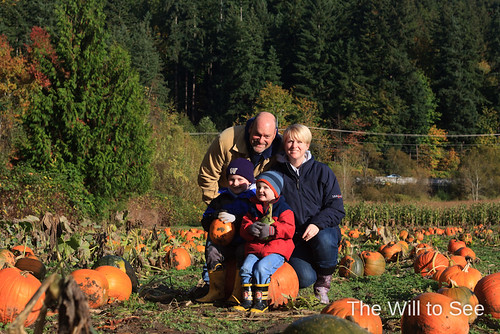 pumpkin patch 2012 #4