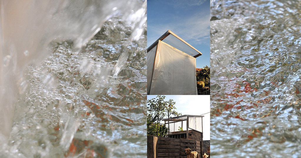 Sistema aquapónico