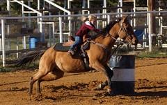 Kellyville Barrel Race October 28th