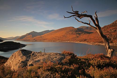 Loch Mullardoch View. by Gordie Broon.