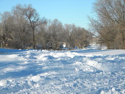 Sherry - January 2011 Snow