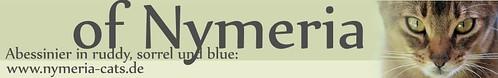 Nymeria Banner groß