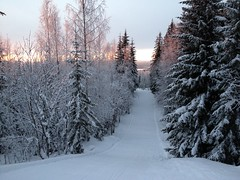 Finland skiing