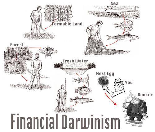 FINANCIAL DARWINISM