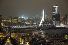 Erasmus Bridge by Night
