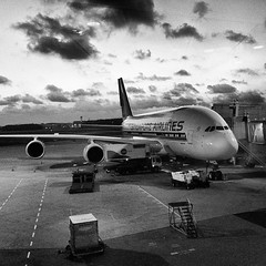新航有A380