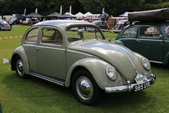 385 UYL 1959 VW Beetle