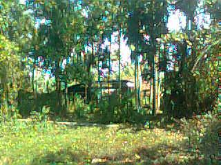 eroor-panoramalastplot