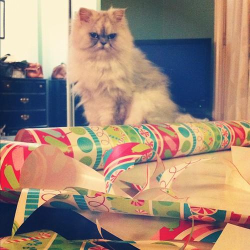 Christmas Gossamer