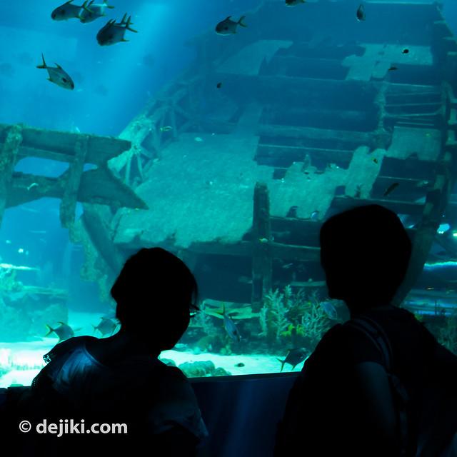 Viewing a Shipwreck
