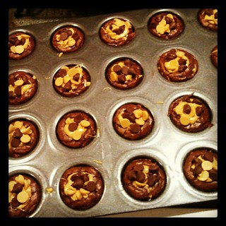 Peanut Butter Cup Brownies for #racing banquet tomorrow #peanutbutter #brownies #yumo