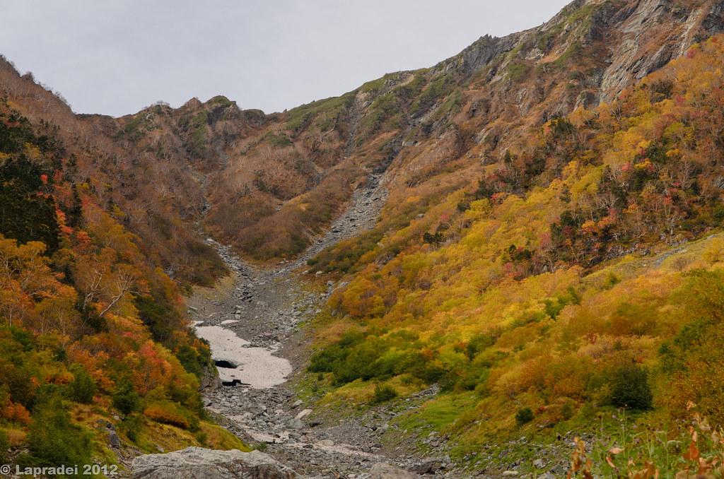 北岳の紅葉