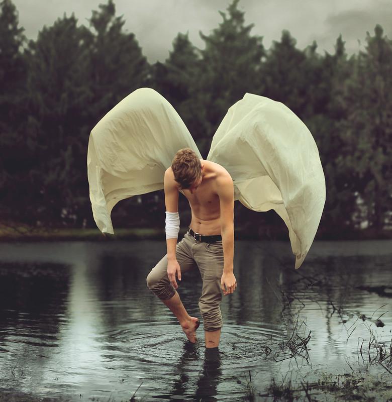 Frail Moth