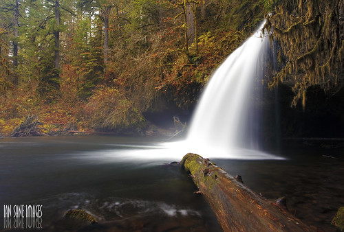 autumn trees fall nature water oregon creek forest river ian log long exposure butte images falls upper late brook wilderness sane