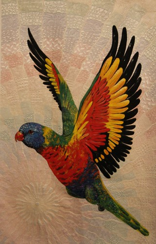 Rainbow Lorikeet by Helen Godden