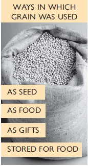NCERT Class VI Social Studies Chapter 3 From Gathering to Growing Food