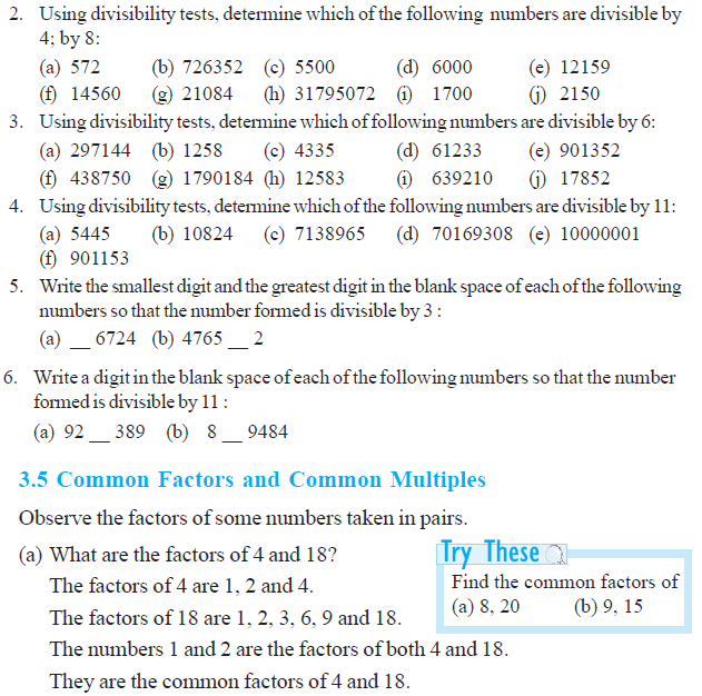 NCERT Class VI Mathematics Chapter 3 Playing with Numbers – Divisibility Rules Worksheets Grade 6