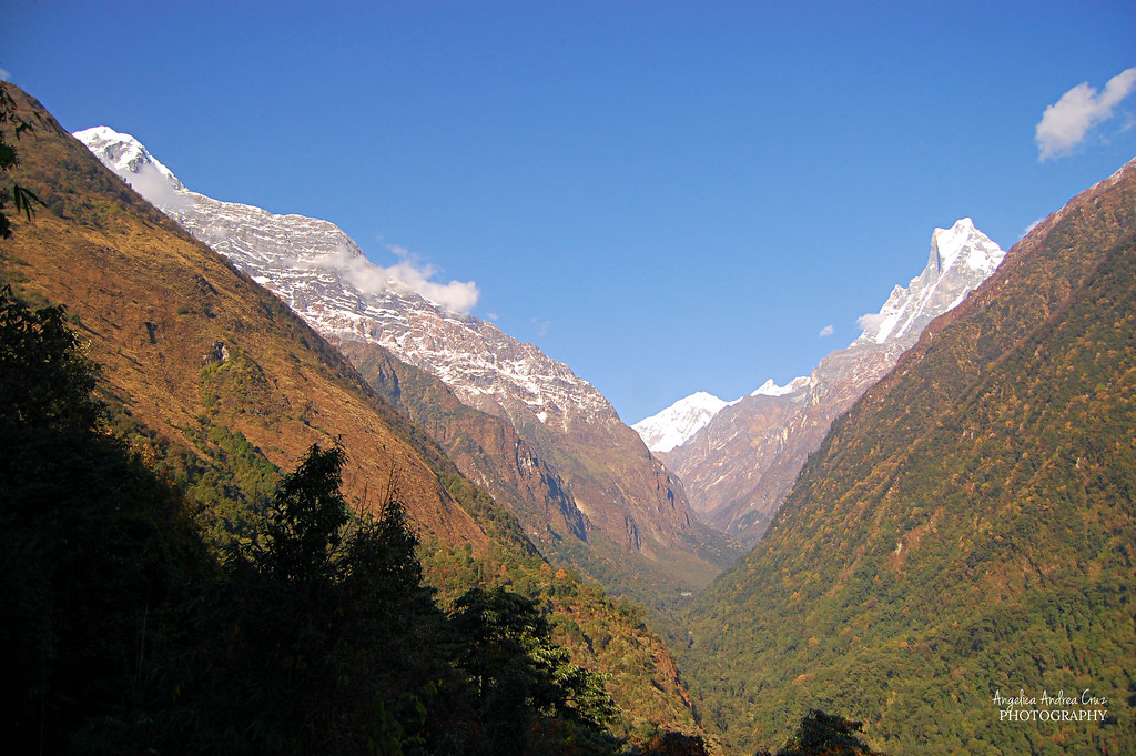 Nepal Bday