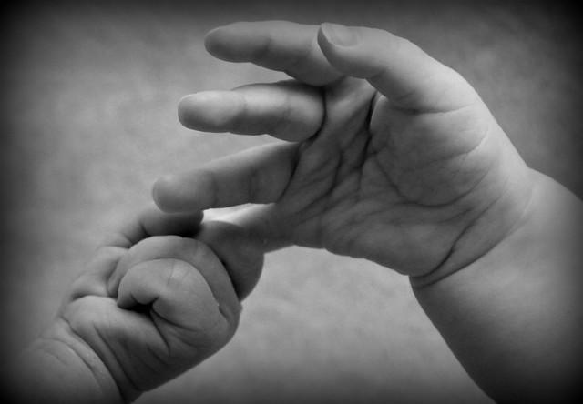 babies holding hands