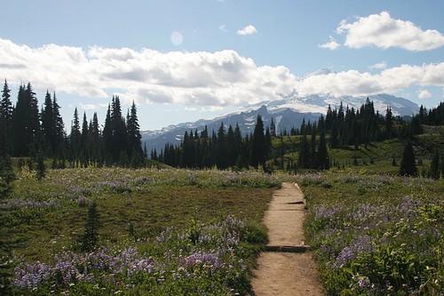 Mt Rainier Anniversay Hike 2012