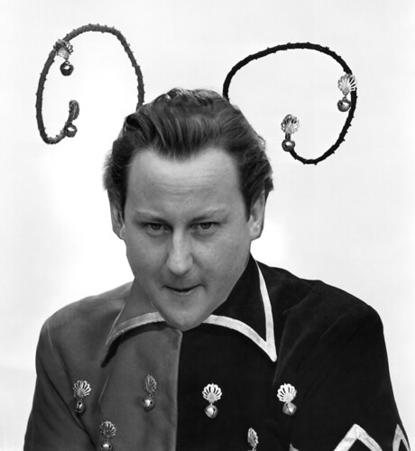 DAVID CAMERON by Colonel Flick