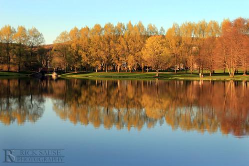 trees lake reflection fall colors photography spring couple university taylor colgate colgateuniversity