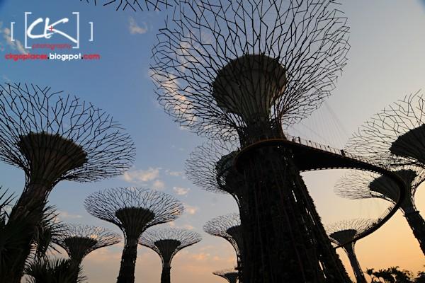 Singapore_0136