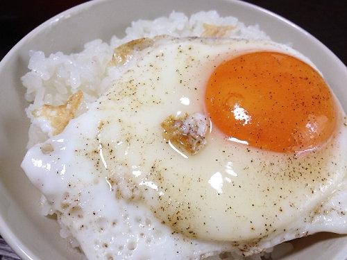 そまのかわファームの卵@香芝市-09