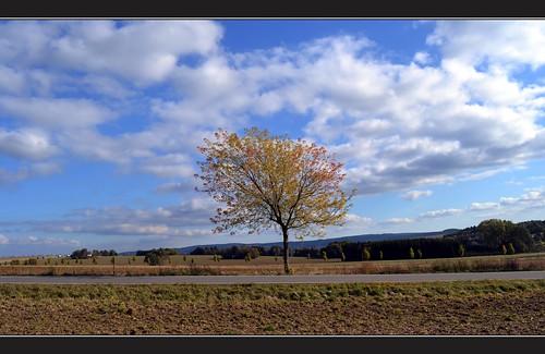 Landschaft bei  Marienberg.