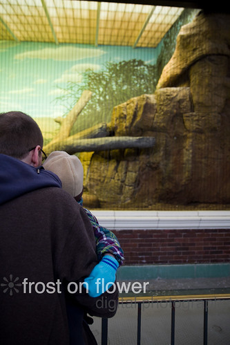 20121123-thanksgiving-25.jpg
