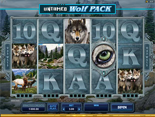 Untamed - Wolf Pack