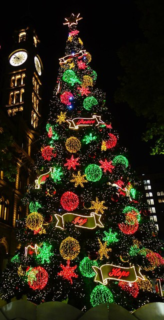 Martin Place, Sydney Christmas Tree lit up at night
