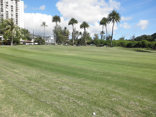 Ala Wai Golf Course 023