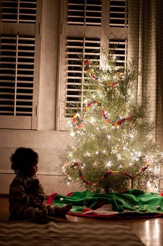 november 17. kids trees_0006