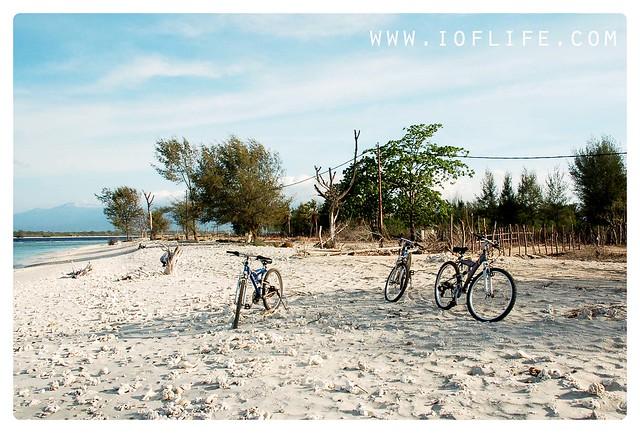 pasukan sepeda