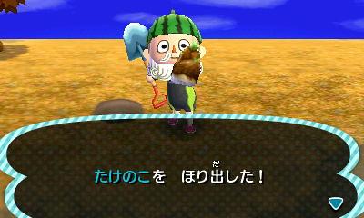 【20121202】とびだせ どうぶつの森日記