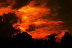 [フリー画像素材] 自然風景, 空, 雲, 朝焼け・夕焼け ID:201212081600