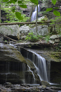 Unnamed Falls - Cloudland Canyon State Park by USWildflowers, on Flickr