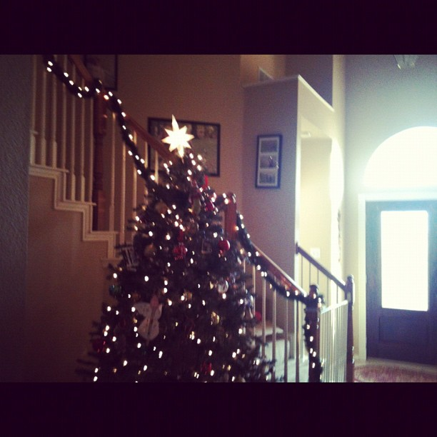 #christmasiscoming #decorating yayyyy!!!