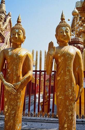 geotagged thailand southeastasia 35mmfilm chiangmai buddhisttemple norththailand thaibuddhism suthep thaitemple canonftb fujisensia watphrathatdoisuthep theravadabuddhism วัดพระธาตุดอยสุเทพ geo:lon=98921628 daviddorren thaiboyscouts thaigirlguides thaigirlscouts geo:lat=18804674 phunoiexcavation